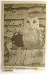 The owl's hoot does not cause nightfall